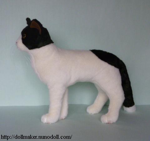Bicolor Cat How To Make